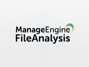 300x400-fileanalysis-manageengine